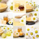 Beautiful Spa collage. Chamomile, honey, bath salt stock photo