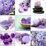 Beautiful Spa collage. Nine licac spa pictures Royalty Free Stock Photo
