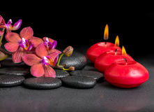 Beautiful spa composition of blooming twig red orchid flower, ph royalty free stock photography