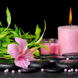 Beautiful spa composition of pink hibiscus flower, twigs bamboo, pearl beads and candles on zen basalt stones with dew, closeup stock photography