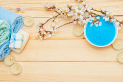 Beautiful spa composition with spring flowers Stock Photography