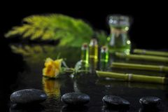 Beautiful spa composition with zen basalt stones and bamboo essential oil plants and flowers on black background. Beautiful spa composition with zen basalt royalty free stock photography