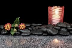 Beautiful spa concept of blooming  flower,. Candles and black stones Stock Photo