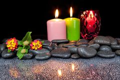 Beautiful spa concept of blooming  flower,. Candles and black stones Stock Photos