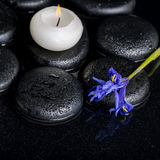 Beautiful spa concept of blooming iris flower, candle and black Royalty Free Stock Images