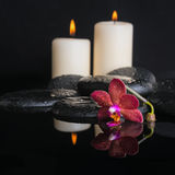 Beautiful spa concept  of deep purple orchid Royalty Free Stock Image