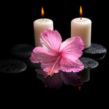 Beautiful spa concept  of delicate pink hibiscus, candles Stock Image