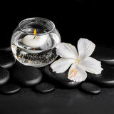 Beautiful spa concept of dew white hibiscus flower and candles  Royalty Free Stock Images