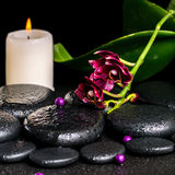 Beautiful spa concept of flower orchid, phalaenopsis, candle Royalty Free Stock Photo