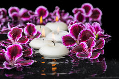 Beautiful spa concept of geranium flower and candles in ripple r Stock Image