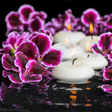 Beautiful spa concept of geranium flower and candles in ripple r Stock Photography