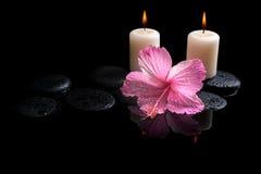 Beautiful spa concept gevoelige roze hibiscus, kaarsen Stock Afbeelding
