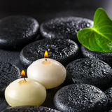 Beautiful spa concept of green leaf Calla lily and candles on ze Stock Images
