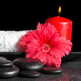 Beautiful spa concept of hibiscus flower with dew, red candles a Stock Image