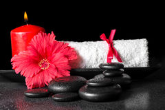 Beautiful spa concept of hibiscus flower with dew, red candles a Royalty Free Stock Image
