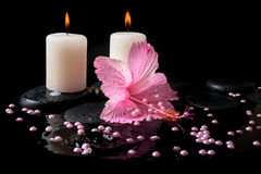 Beautiful spa concept  of pink hibiscus, candles, zen stones Royalty Free Stock Photo