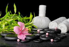 Beautiful spa concept of pink hibiscus flower, bamboo, thai herb Stock Image