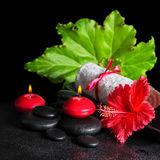 Beautiful spa concept of red hibiscus flower with dew, candles, Stock Photos
