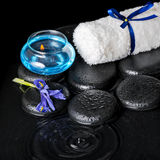 Beautiful spa concept top down of iris flower Stock Images