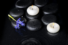 Beautiful spa concept top down of iris flower, candles and black Royalty Free Stock Photography