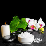 Beautiful spa concept of white orchid flower, phalaenopsis, gree Royalty Free Stock Images