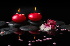 Beautiful spa concept of white and red orchid (cambria) Royalty Free Stock Photo