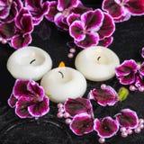 Beautiful spa ακόμα ζωή του λουλουδιού και των κεριών γερανιών στο rippl Στοκ Εικόνες