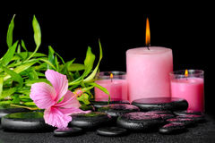 Beautiful spa samenstelling van roze hibiscusbloem, takjesbamboe Royalty-vrije Stock Foto's