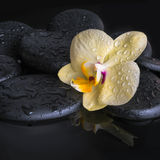 Beautiful spa set of yellow orchid (phalaenopsis), zen stones Stock Photography