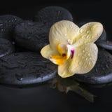 Beautiful spa set of yellow orchid (phalaenopsis), zen stones Stock Photography