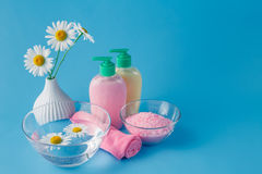 Beautiful spa setting with daisy on blue table close-up Stock Photos
