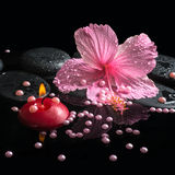 Beautiful spa setting of delicate pink hibiscus, red candles Stock Images