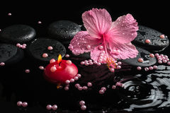 Beautiful spa setting of delicate pink hibiscus, zen stones. With drops, candle and pearl beads on ripple water, closeup royalty free stock photo