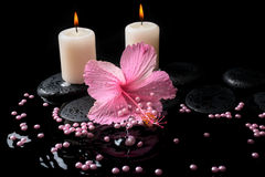 Beautiful spa setting of pink hibiscus, candles, zen stones Stock Photography
