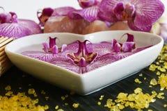 Beautiful spa setting Royalty Free Stock Image