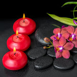 Beautiful spa setting of twig red orchid flower, phalaenopsis Stock Image