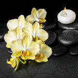 Beautiful spa setting of yellow orchid phalaenopsis and candles Royalty Free Stock Image