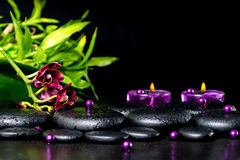 Beautiful spa setting of zen basalt stones with drops royalty free stock image