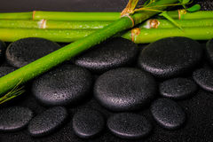 Beautiful spa setting of zen basalt stones and natural bamboo st. Ems with dew, closeup royalty free stock images
