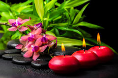 Beautiful spa still life of blooming twig red orchid flower, phalaenopsis, bamboo with dew and candles on zen basalt. Stones, closeup stock photos