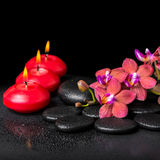 Beautiful spa still life of blooming twig red orchid flower Royalty Free Stock Image
