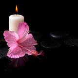 Beautiful spa still life of delicate pink hibiscus, candles Royalty Free Stock Images