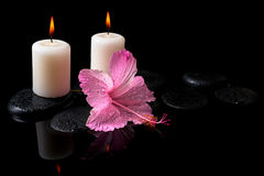 Beautiful spa still life of delicate pink hibiscus, candles Stock Photography