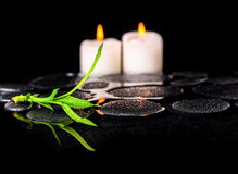 Beautiful spa still life of green twig bamboo and candles on zen Royalty Free Stock Image