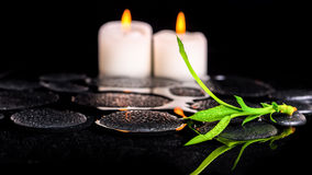 Beautiful spa still life of green twig bamboo and candles on zen Royalty Free Stock Photo