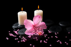 Beautiful spa still life of pink hibiscus, candles, zen stones Royalty Free Stock Photos