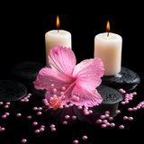 Beautiful spa still life of pink hibiscus, candles, zen stones. With drops and pearl beads on reflection water, closeup stock image