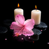 Beautiful spa still life of pink hibiscus, drops,  candles Royalty Free Stock Photography