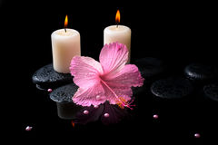 Beautiful spa still life of pink hibiscus, drops,  candles Stock Photo