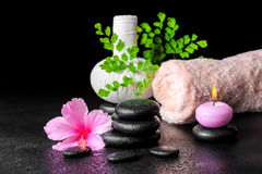 Beautiful spa still life of pink hibiscus flower, leaf fern, tha Royalty Free Stock Photos